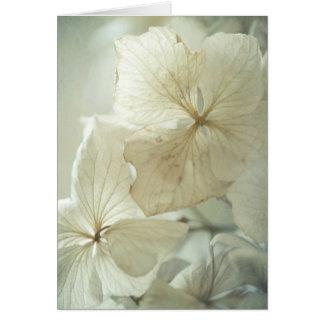 Delicate hydrangea petals card