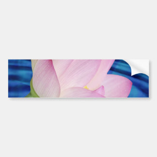Delicate Lotus flower and meaning Bumper Sticker
