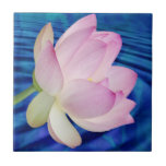 Delicate Lotus flower and meaning Small Square Tile