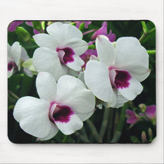 Delicate orchids, white and purple mousepad