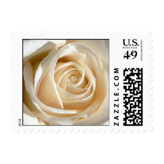 Delicate painted like white rose ( small size ) postage