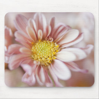 Delicate Peach and Yellow Flower Mouse Pad