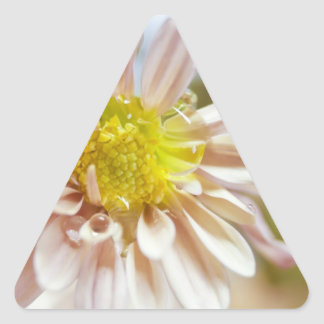 Delicate Peach Flower and Water Drop Triangle Sticker