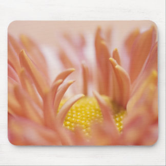 Delicate Peach Flower Mouse Pad