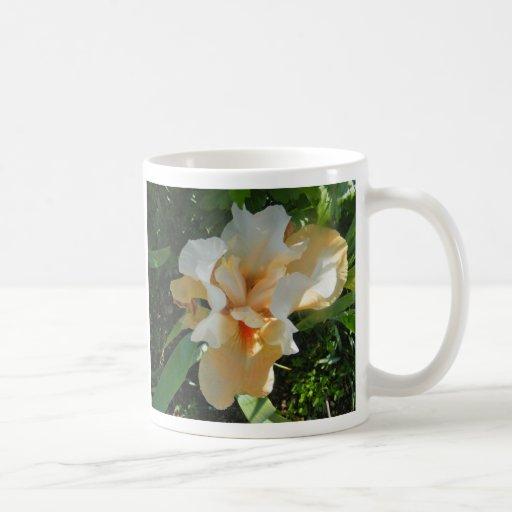Delicate Peach Iris Mug