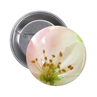 Delicate Pink Apple Blossom Button