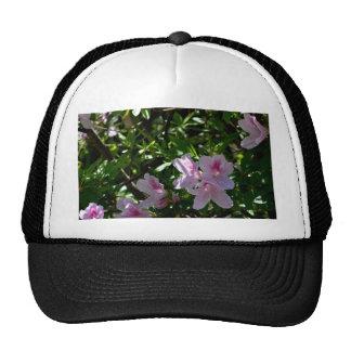 Delicate Pink Azaleas Mesh Hats