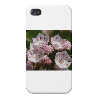 Delicate Pink iPhone 4 Case