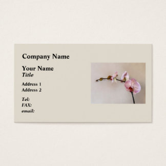 Delicate Pink Phalaenopsis Orchids Business Card