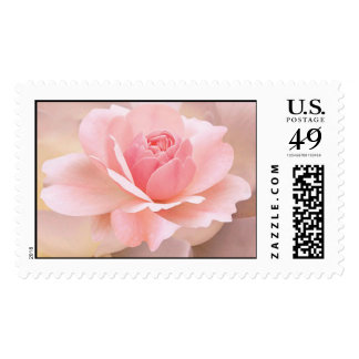 Delicate Pink Rose Postage