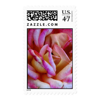 Delicate Pink Rose Watercolor Photo Art Postage