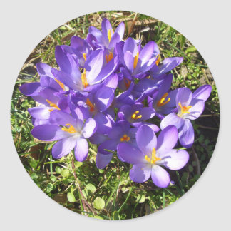 Delicate Purple Flowers CricketDiane Florals Classic Round Sticker