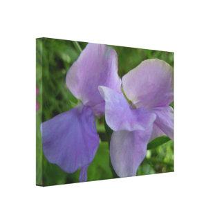 Delicate Purple Sweet Peas Canvas Print