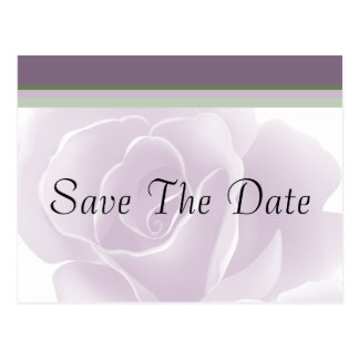 Delicate Rose Floral Save The Date Postcards