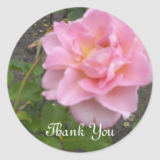 Delicate Rose Thank You Classic Round Sticker