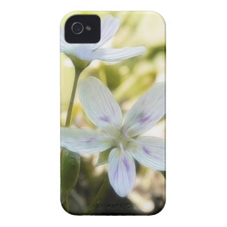 Delicate Spring Beauty Flowers Case-Mate iPhone 4 Case
