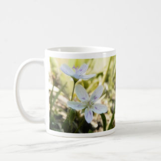 Delicate Spring Beauty Flowers Classic White Coffee Mug
