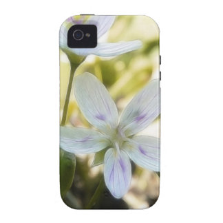 Delicate Spring Beauty Flowers iPhone 4 Cover