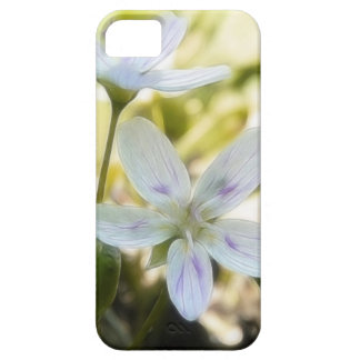 Delicate Spring Beauty Flowers iPhone 5 Covers