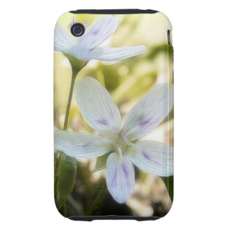 Delicate Spring Beauty Flowers Tough iPhone 3 Case