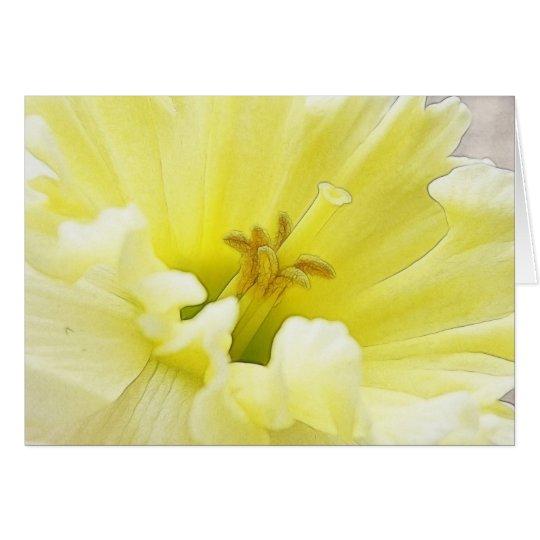 Delicate Spring Daffodil Card