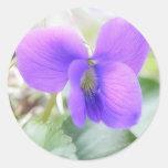 Delicate Spring Violet Round Sticker