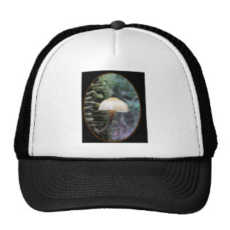 Delicate tree hugger fungi trucker hat
