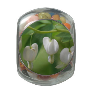Delicate White Bleeding Heart Jelly Belly Candy Jars