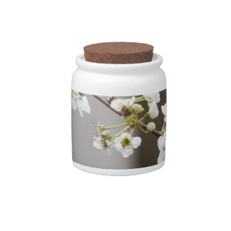 Delicate White Blossoms Candy Jars