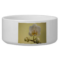 Delicate White Orchid Bowl