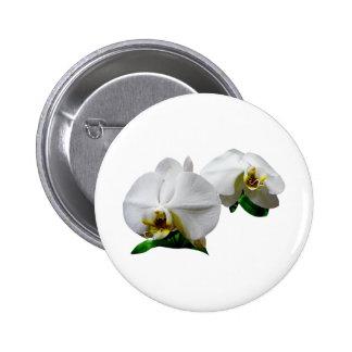 Delicate White Orchids Pinback Button