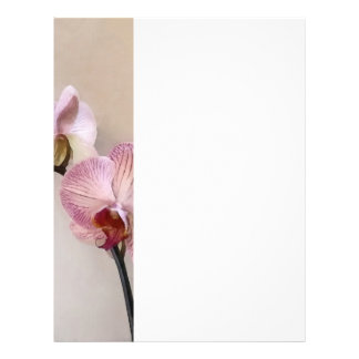 Delicate White Phalaenopsis Orchids Flyer