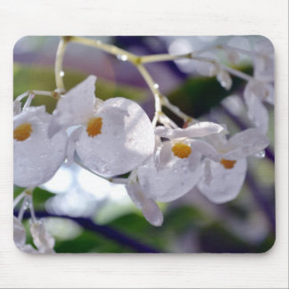 Delicate White Tropical Flowers Mouse Pad