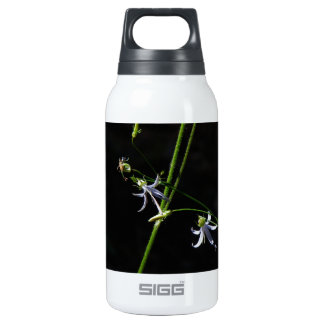 DELICATE WILD SPRING FLOWERS IN BLOOM INSULATED WATER BOTTLE