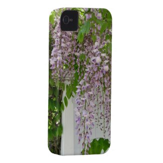 Delicate Wisteria ~ iPhone 4 CaseMate Barely There