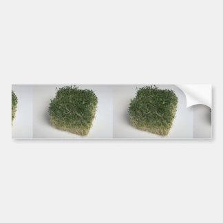 Delicious Bean sprouts Bumper Stickers
