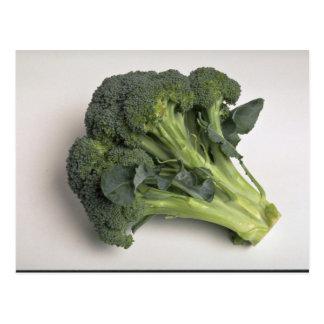 Delicious Broccoli Postcards