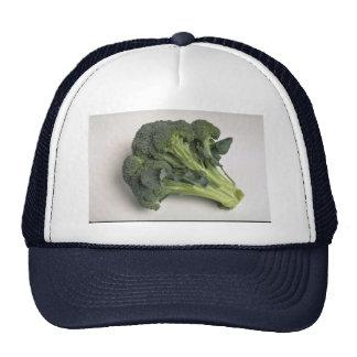 Delicious Broccoli Trucker Hat