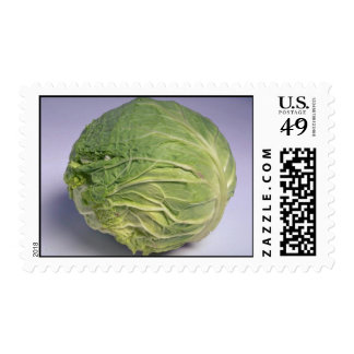 Delicious Cabbage Stamps