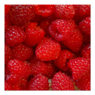 Delicious cute dark pink raspberry photograph poster