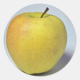 Delicious Golden Delicious apple Classic Round Sticker