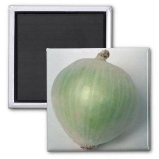 Delicious Onion Refrigerator Magnet