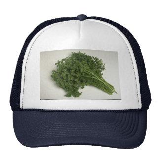 Delicious Parsley Trucker Hat