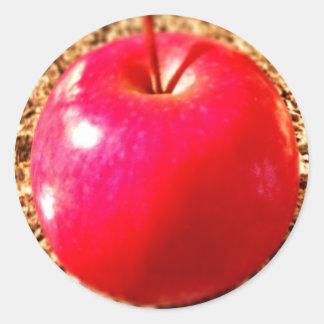 Delicious Red Apple Classic Round Sticker