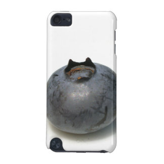 Delicious Single Blueberry Fruit iPod Touch 5G Case