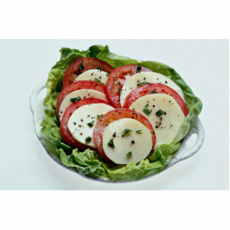 Delicious Tomato and cheese salad Standing Photo Sculpture