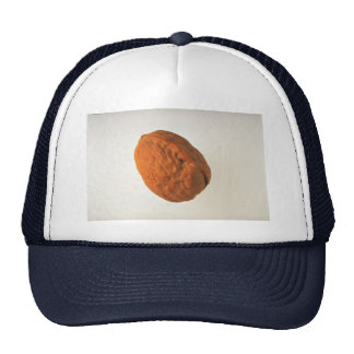 Delicious Walnut Trucker Hat