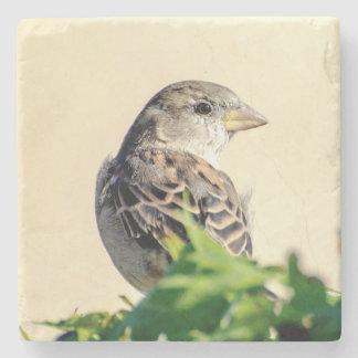 Delightful Bird Stone Coaster