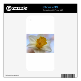Delightful Daffodil Decals For The iPhone 4