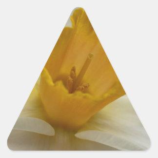Delightful Daffodil Triangle Sticker